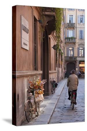 Bicycle with Flowers and Shopping Bags , Parma, Emilia Romagna, Italy