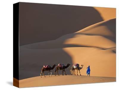 Camel in the Sahara Desert Sunset Egypt Framed Canvas Wall Art Picture Print