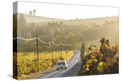 Car and Road Through Winelands and Vineyards, Nr Franschoek, Western Cape Province, South Africa