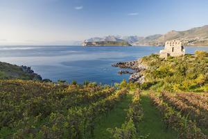 Carpino Bay, Scalea, Calabria, Italy by Peter Adams