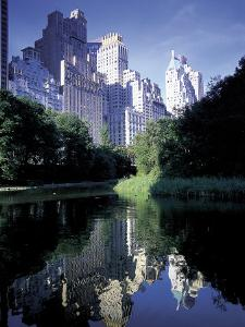 Central Park, New York City, New York by Peter Adams