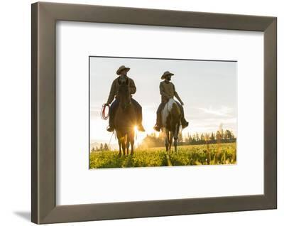 Cowboys Riding across Grassland with Moutains Behind, Early Morning, British Colombia, B.C., Canada