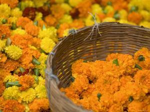 Flower Market, Calcutta, West Bengal, India by Peter Adams