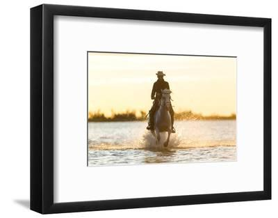 Gardian, Cowboy and Horseman of the Camargue, Camargue, France