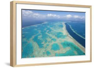 Great Barrier Reef, Queensland, Australia by Peter Adams