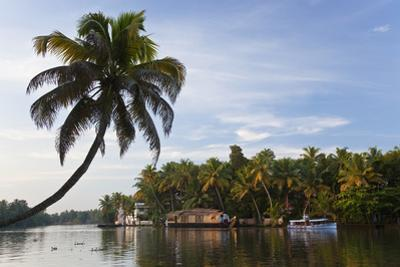 Houseboat, Backwaters, Alappuzha or Alleppey, Kerala, India by Peter Adams