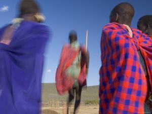 Masai Tribe, Masai Mara National Park, Kenya by Peter Adams