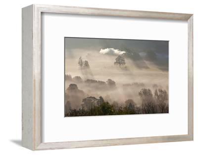 Misty Autumn Morning, Uley, Gloucestershire, England, UK