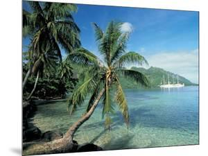Moorea, Society Islands, French Polynesia by Peter Adams