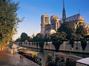 Notre Dame Cathedral, Paris, France by Peter Adams