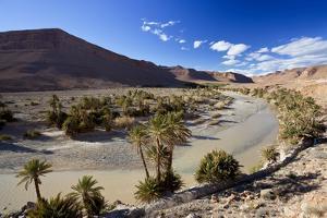 River and Desert, Near Erfoud, Meknes-Tafilalet, Morocco by Peter Adams