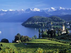 Spiez, Lake Thun, Berner Oberland, Switzerland by Peter Adams