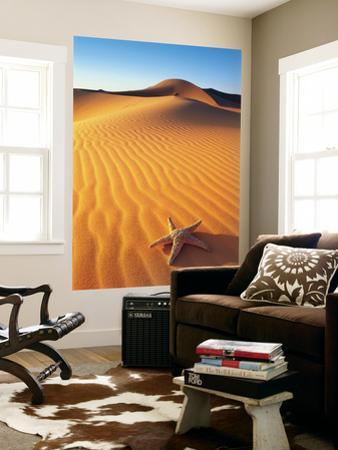 Beautiful Morocco Photography wall murals artwork for sale Posters