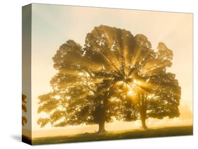 Sunrise, Usk Valley, South Wales, UK