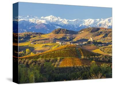 Vineyards and Castle, Grinzane Cavour, Cuneo District, Langhe