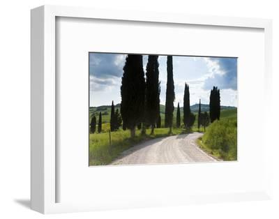 Winding Road, Near Pienza, Tuscany, Italy