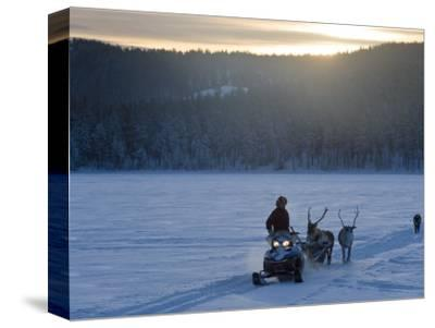 Winter Landscape, Reindeer and Snowmobile, Jokkmokk, Sweden