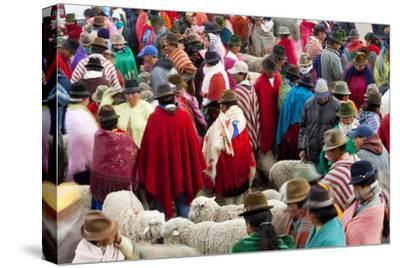 Zumbahua Animal Market, Zumbahua, Near Latacunga, Ecuador