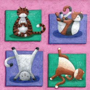 Yoga for Cats by Peter Adderley