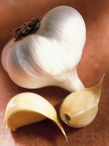 Garlic by Peter Ardito