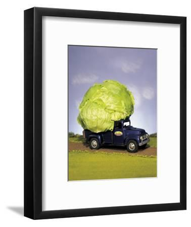 Lettuce in Bed of Miniature Truck