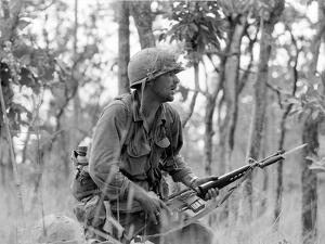 Vietnam War Ia Drang Battle Rescorla by Peter Arnett