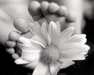 Baby's Feet with Blossom by Peter Barrett