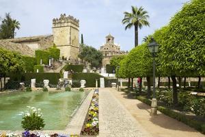 Gardens in Alcazar, Cordoba, Andalucia, Spain, Europe by Peter Barritt