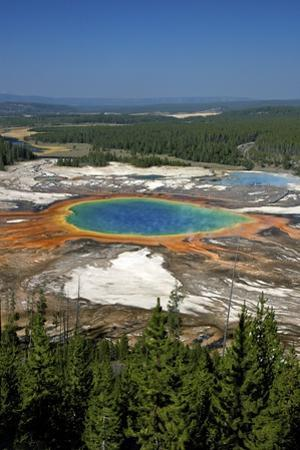 Grand Prismatic Spring, Midway Geyser Basin, Yellowstone Nat'l Park, UNESCO Site, Wyoming, USA by Peter Barritt