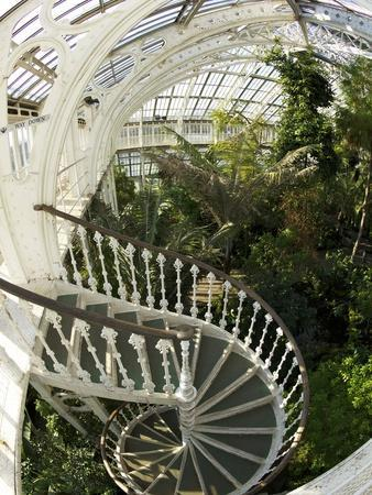 Staircase in Temperate House, Royal Botanic Gardens, UNESCO World Heritage Site, London, England