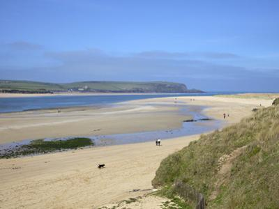 Visitors and Tourists Walking Dogs on Beach at Camel Estuary Near Rock, North Cornwall, England, Uk by Peter Barritt