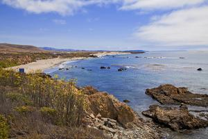 Piedras Blancas, San Simeon, San Luis Obispo County, California, USA by Peter Bennett