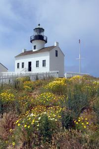 Point Loma Lighthouse, San Diego, California, USA by Peter Bennett