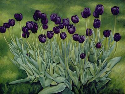 Black Tulips, 2002