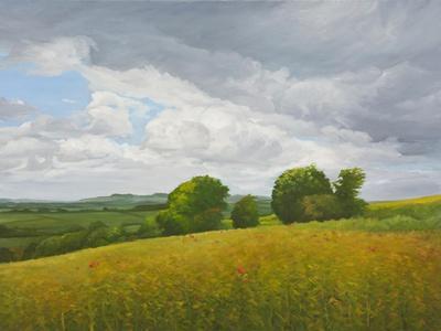 Wiltshire Landscape, Along the Wessex Ridgeway, 2010