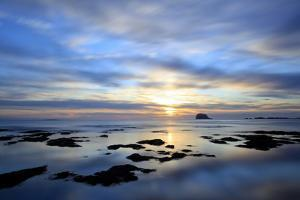 Bass Rock at Dawn, North Berwick, Scotland, UK, August. 2020Vision Book Plate by Peter Cairns