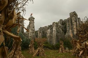 A Climber Balances Atop a Spire in the Stone Forest by Peter Carsten