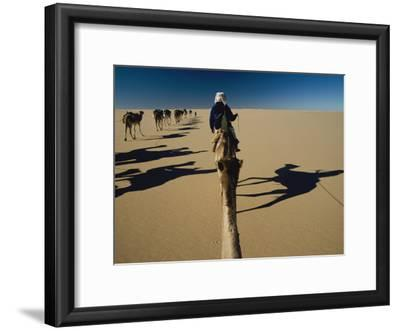 Camel caravan and their shadows crossing the Desert of Marzuq