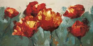 Poppies On Slate by Peter Colbert