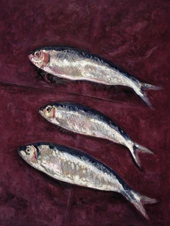 Three Fish, 1997
