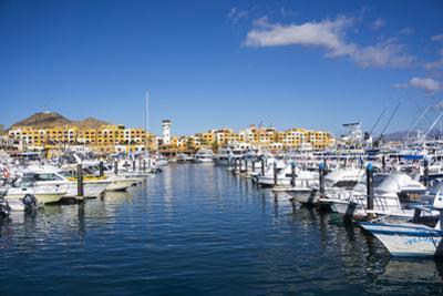 Cabo San Lucas Marina, Baja California, Mexico, North America by Peter Groenendijk