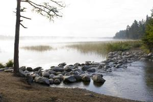 USA, Minnesota, Itasca State Park, Mississippi Headwaters by Peter Hawkins