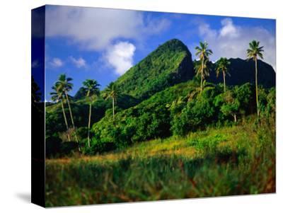 Palm Trees and Dense Jungle Peaks, Rarotonga, Southern Group, Cook Islands