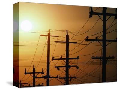 Power Lines at Dusk, Australia