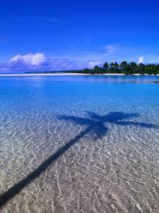 Shadow of Palm Tree on Lagoon, Cook Islands by Peter Hendrie