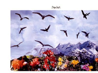 A Dozen Seagull, c.1997
