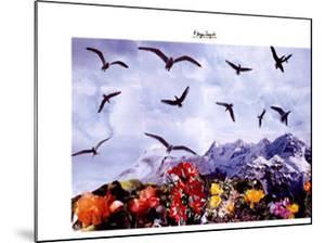 A Dozen Seagull, c.1997 by Peter Hutchinson
