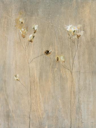 Vanilla Bloom II