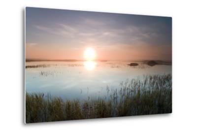 Wetlands on the Coastal Plains of the Arctic National Wildlife Refuge at Sunrise