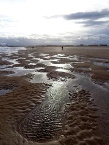Low Tide Hartlepool, 2016 by Peter McClure